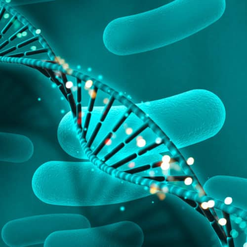 genetic assisted reproduction